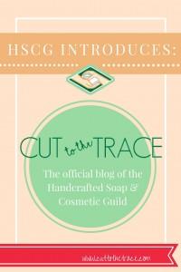 HSCG Introduces New Blog!