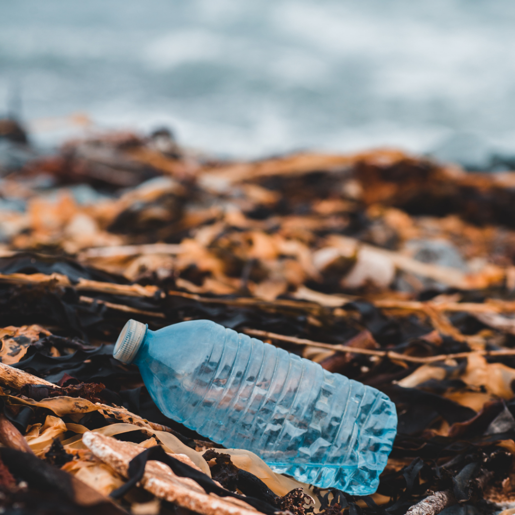 Empty discarded plastic bottle on a beach.